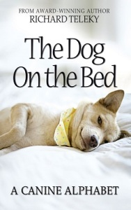 Dog on the Bed 2